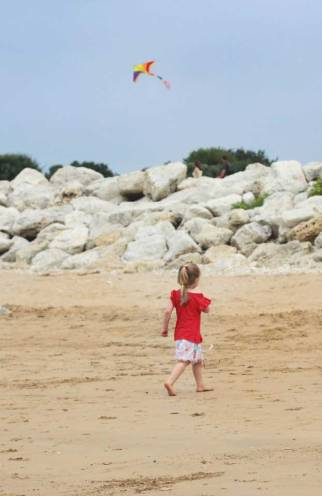 IMG_9458-beach-kite